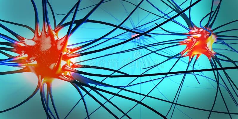 传送的突触、神经元或者神经细胞 向量例证
