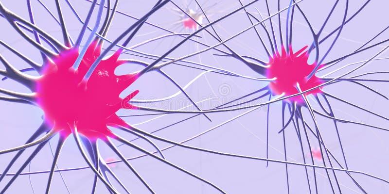 传送的突触、神经元或者神经细胞 皇族释放例证