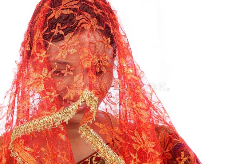 年轻传统印地安妇女 图库摄影