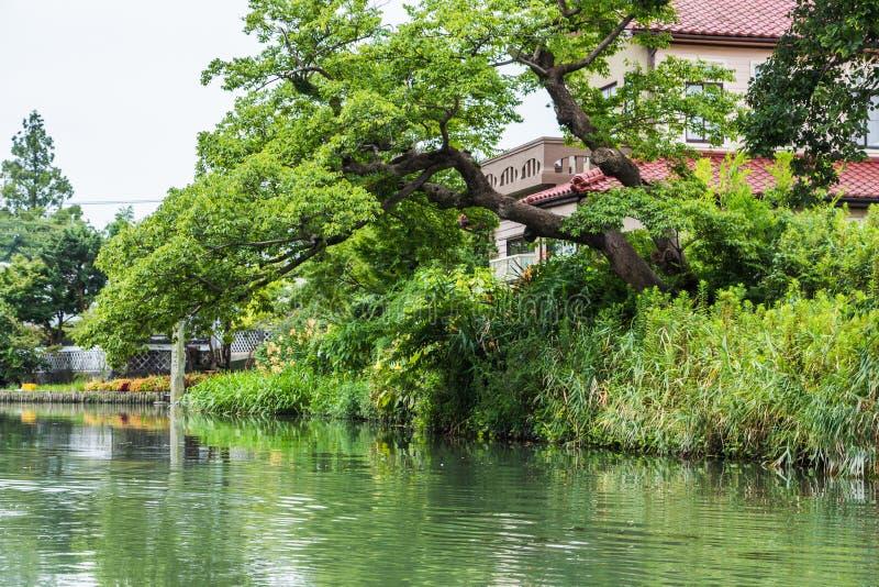 从传统小船游览的看法在柳川,福冈,日本 免版税库存照片