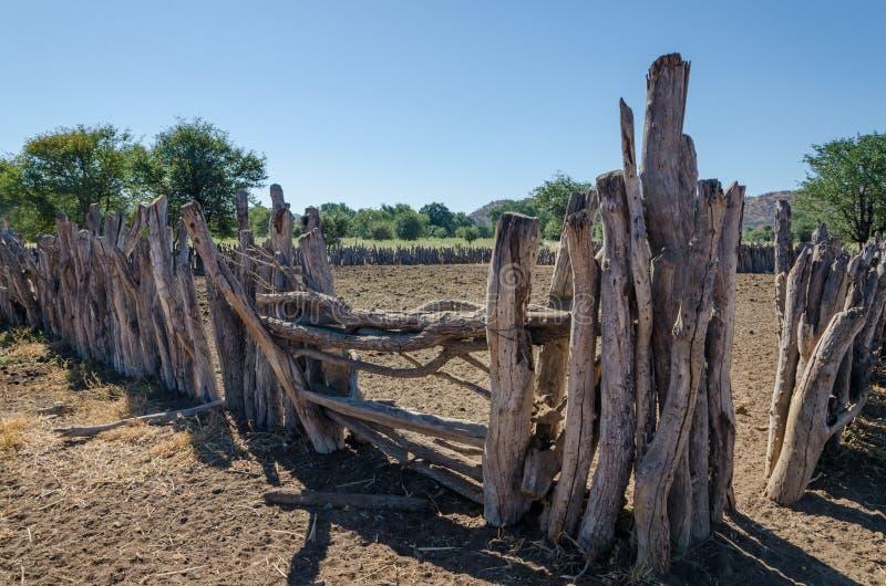 传统木Himba部落人牛的kraal或封入物  库存照片