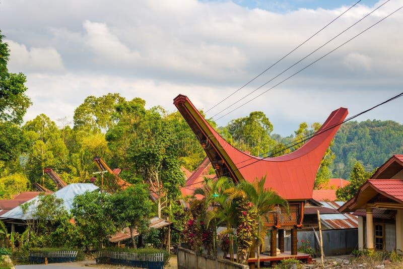 传统村庄在塔娜Toraja,南苏拉威西岛,印度尼西亚 免版税图库摄影