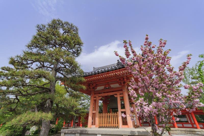 传统红色寺庙和樱桃树开花 免版税库存图片