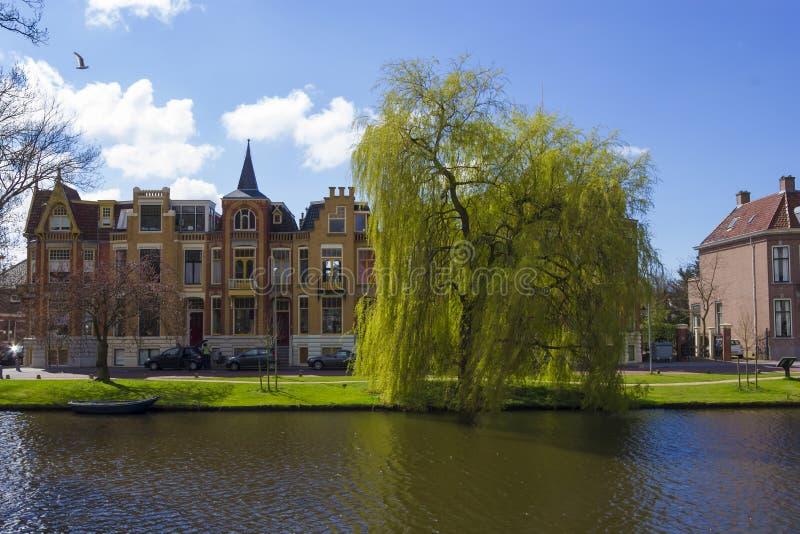 传统荷兰房子,阿尔克马尔镇,荷兰,荷兰 图库摄影