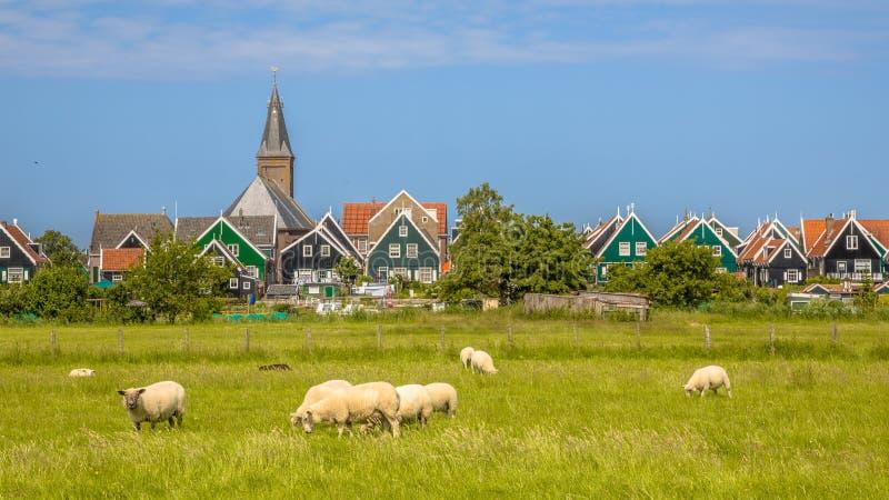传统荷兰村庄全景有五颜六色的木房子的 免版税库存图片