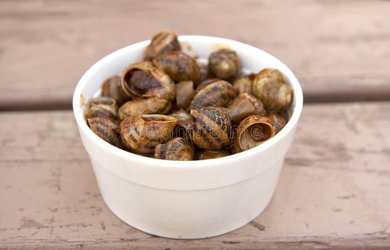 传统马尔他烹调 在白色塑料板材的蜗牛服务与马尔他来源 在Qormi市,马耳他开放厨房赴宴 免版税库存图片