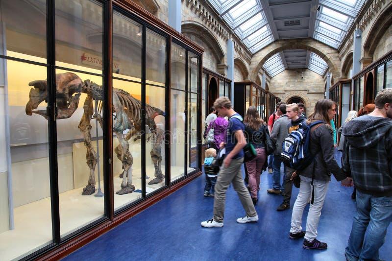 伦敦博物馆 库存图片
