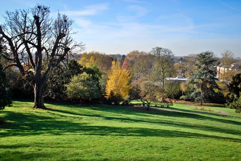 伦敦秋天,里士满公园 免版税库存图片