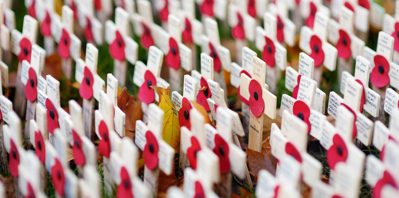 伦敦,英国- 2017年11月19日:鸦片横渡在记忆的西敏寺领域,记住军事和平民wh 免版税库存照片