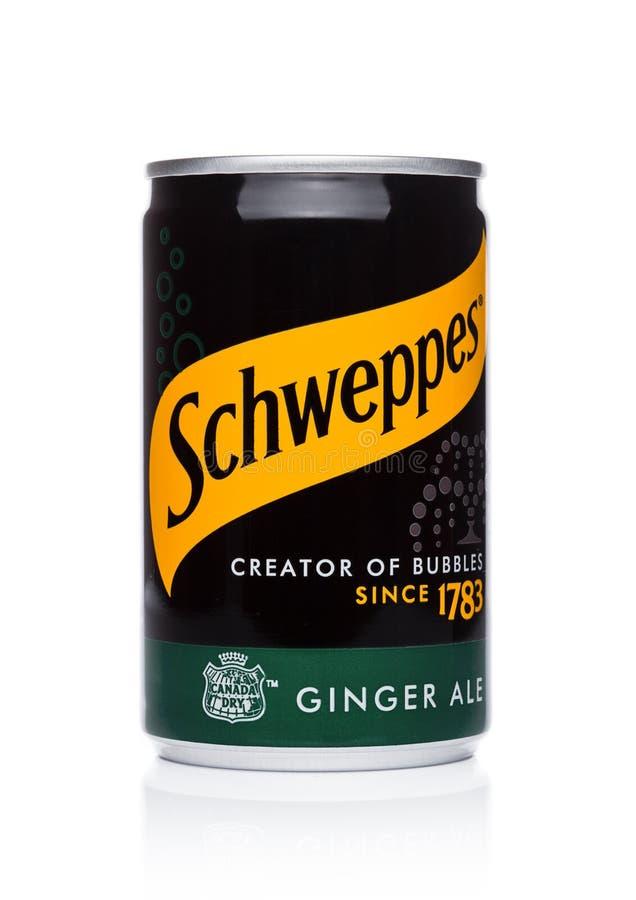 伦敦,英国- 2017年11月10日:Schweppes罐子在白色的姜汁无酒精饮料口味 博士Pepper Snapple Group是Sc的当前所有者 库存图片