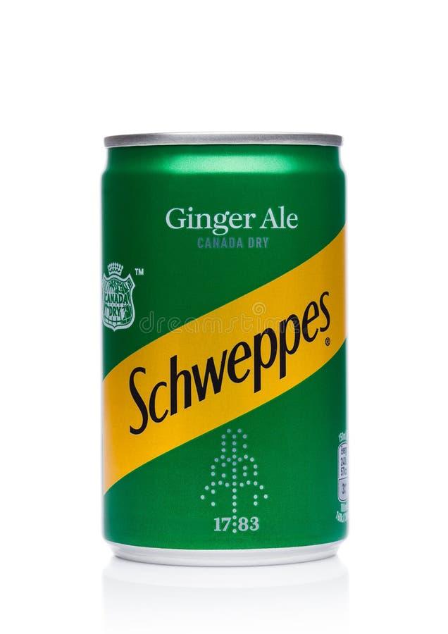 伦敦,英国- 2017年11月10日:Schweppes罐子在白色的姜汁无酒精饮料口味 博士Pepper Snapple Group是Sc的当前所有者 免版税库存图片