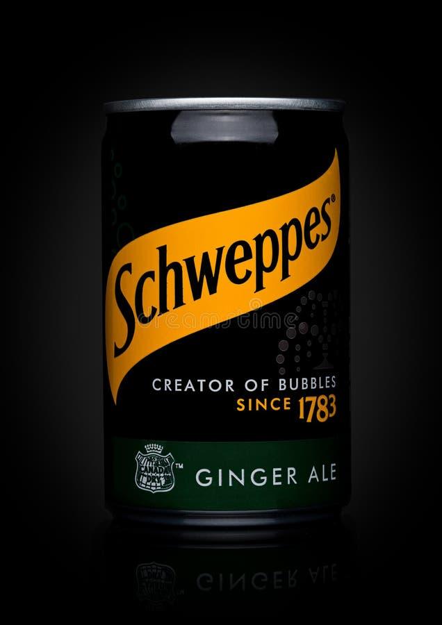 伦敦,英国- 2017年11月10日:Schweppes罐子在黑色的姜汁无酒精饮料口味 博士Pepper Snapple Group是Sc的当前所有者 图库摄影