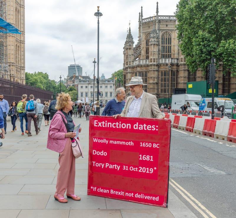 伦敦/英国- 2019年6月26日-在请求政府的议会之外的亲的Brexit运动家交付干净的Brexit 库存图片