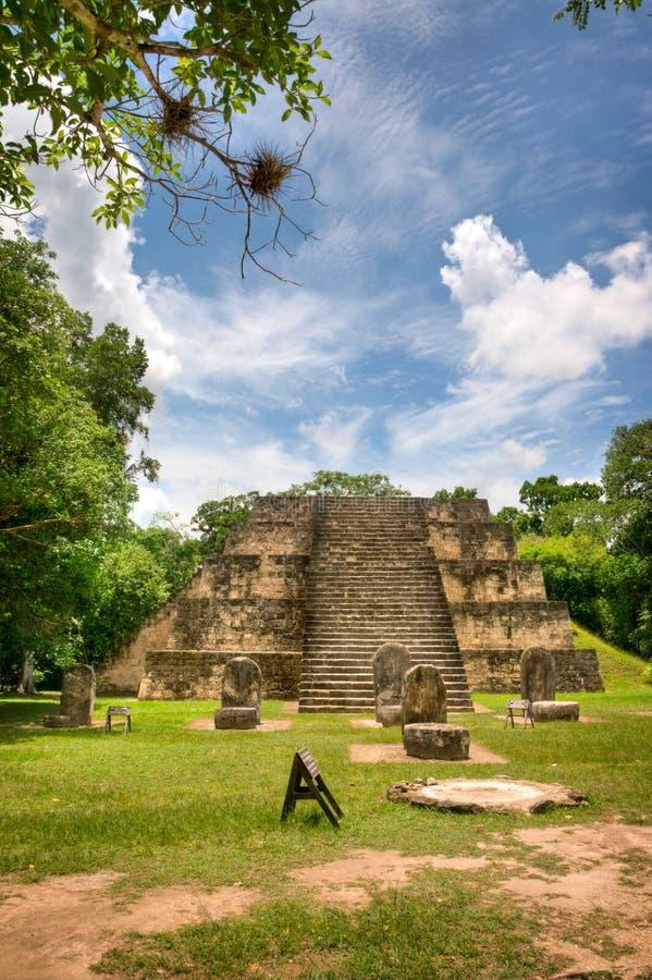 伯利兹玛雅废墟 库存照片