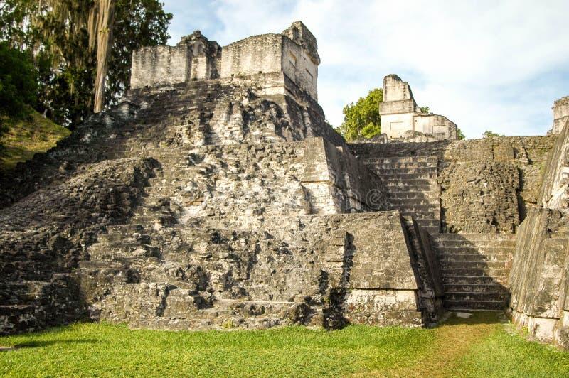 伯利兹玛雅废墟 库存图片