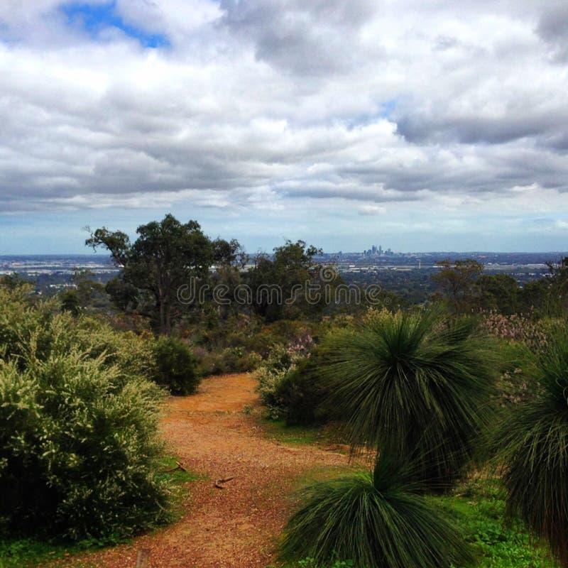 伯斯市,在多云天空下的西澳州与在前景的树 库存图片