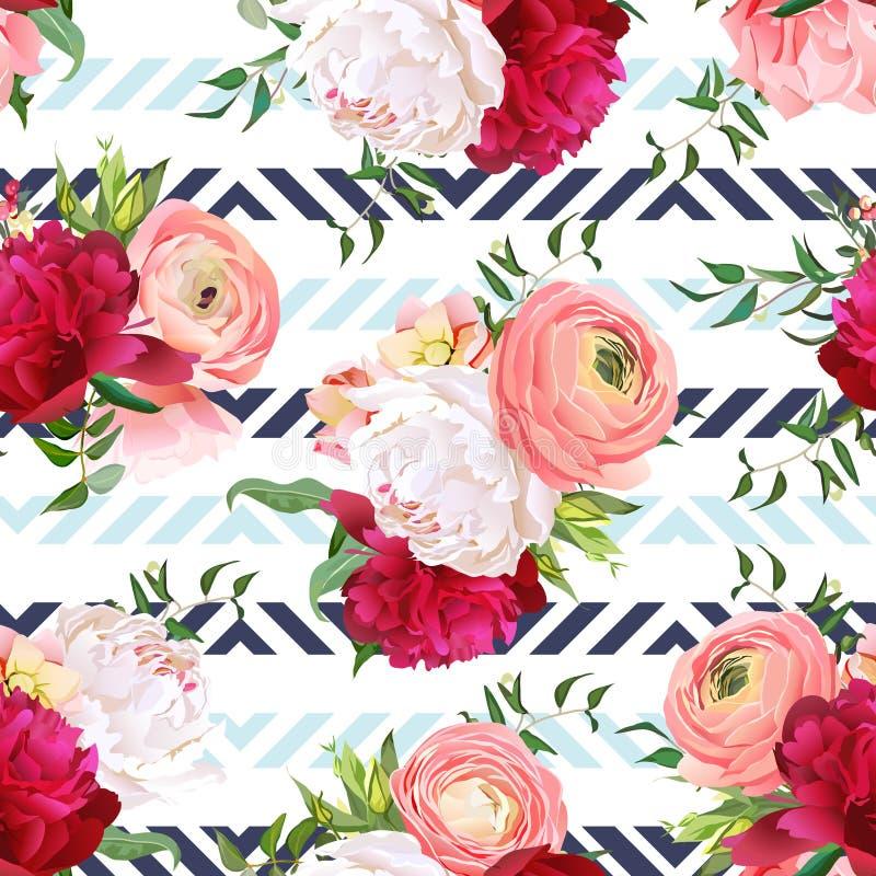 伯根地红色和白色牡丹,毛茛属,玫瑰无缝的传染媒介样式 向量例证