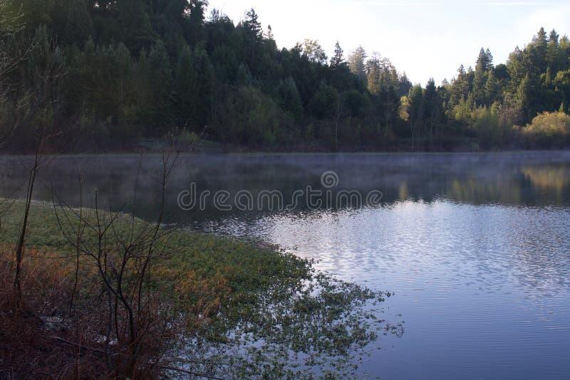 位于沿俄国河,河边区地方公园从街市温莎和Healdsburg的分钟 库存照片
