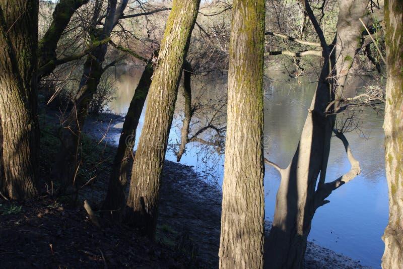 位于沿俄国河,河边区地方公园从街市温莎和Healdsburg的分钟 免版税库存图片