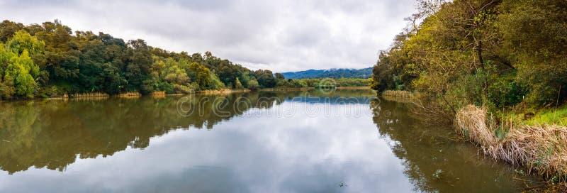 位于碧玉里奇生物蜜饯的Searsville湖在一阴天,旧金山湾区,加利福尼亚 免版税库存照片