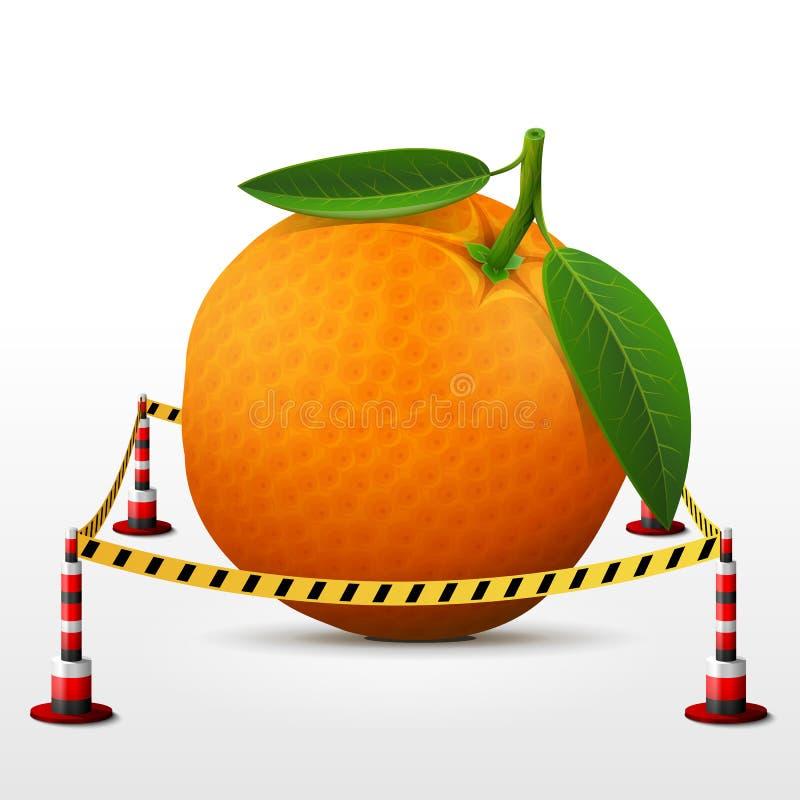位于禁区的橙色果子 库存例证