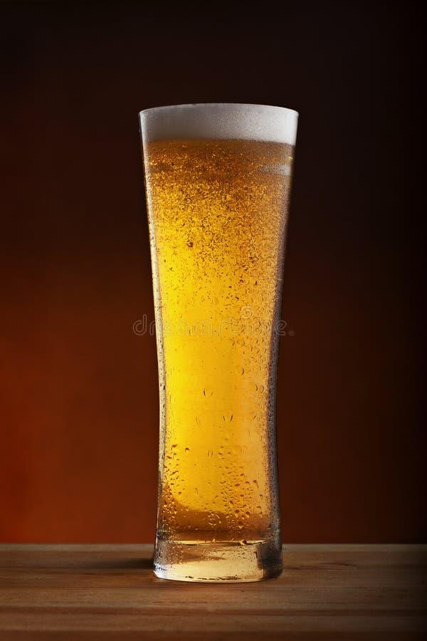 低度黄啤酒 免版税图库摄影