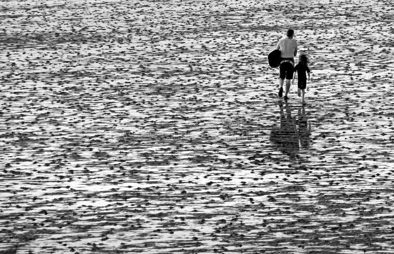 低潮现出轮廓的冲浪者 库存图片