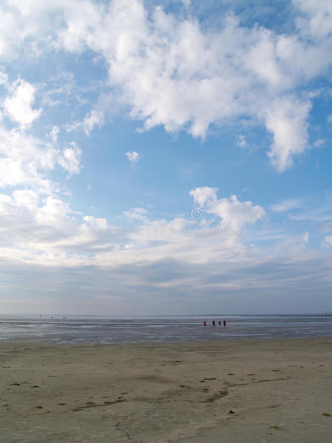 低潮tideland 免版税库存照片