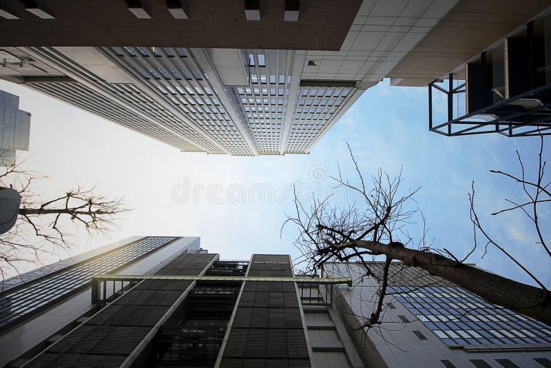 低角度视图大厦在神户口岸,日本附近的日落时间 免版税库存图片