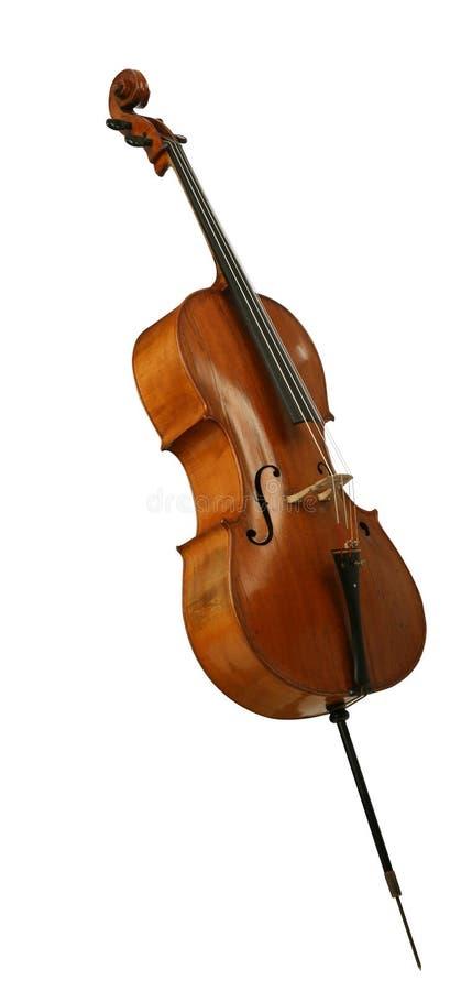 低音大提琴viol大提琴 库存照片