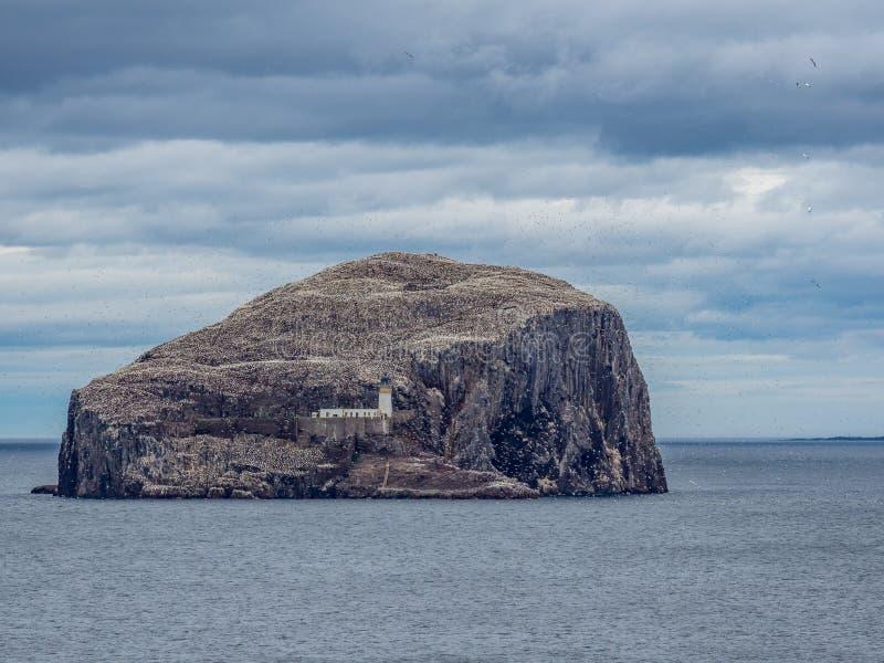 低音岩石 从东南海岸的看法在北部贝里克附近 E 图库摄影