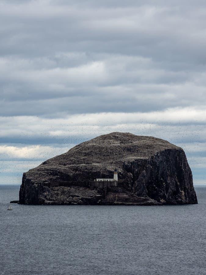 低音岩石 从东南海岸的看法在北部贝里克附近 E 库存图片