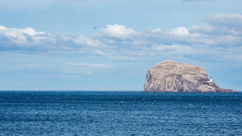 低音岩石 从东南海岸的看法在北部贝里克附近 E 库存照片