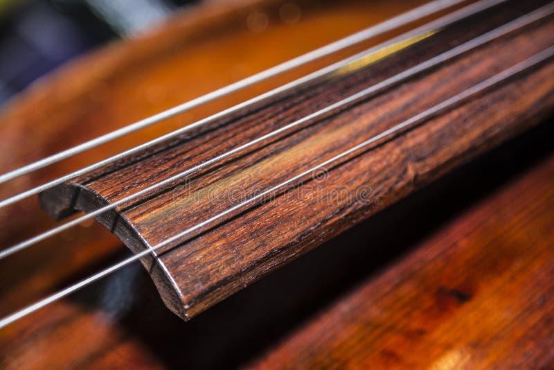 低音提琴脖子和串 库存照片