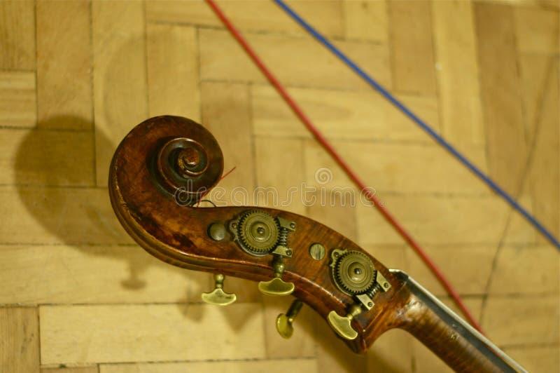低音提琴头;修道院路演播室,伦敦 免版税库存图片