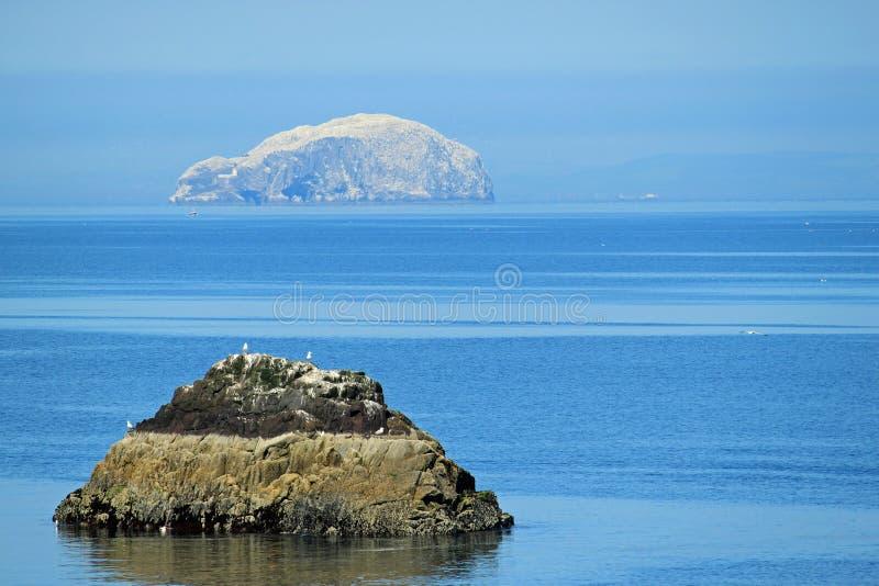 低音dunbar峡湾晃动 免版税库存图片