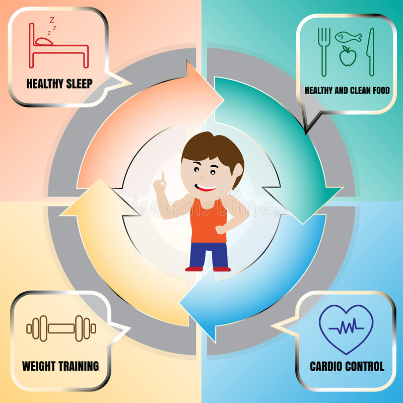 体型和训练周期最大力量的 向量例证
