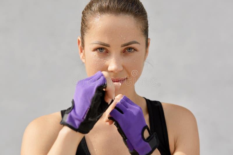体育、拳击和人概念 汗水依据自决的适合少妇在f戴着特别手套,为装箱参加,保留手 免版税库存图片