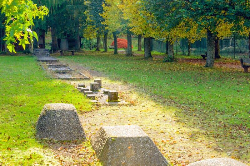 体育和健康在秋季公园 库存照片