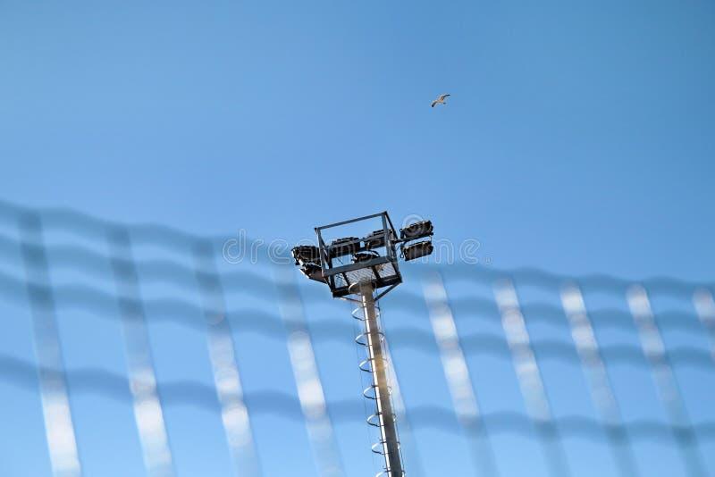 体育场与反射器的泛光灯塔有蓝天backgroun的 图库摄影