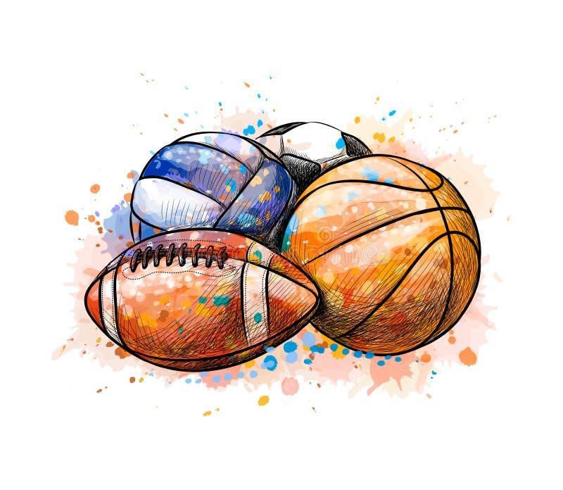 体育球汇集橄榄球从水彩飞溅的篮球排球  库存例证
