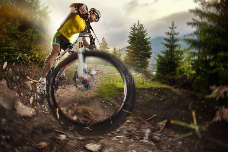 体育运动 骑自行车者 免版税库存照片