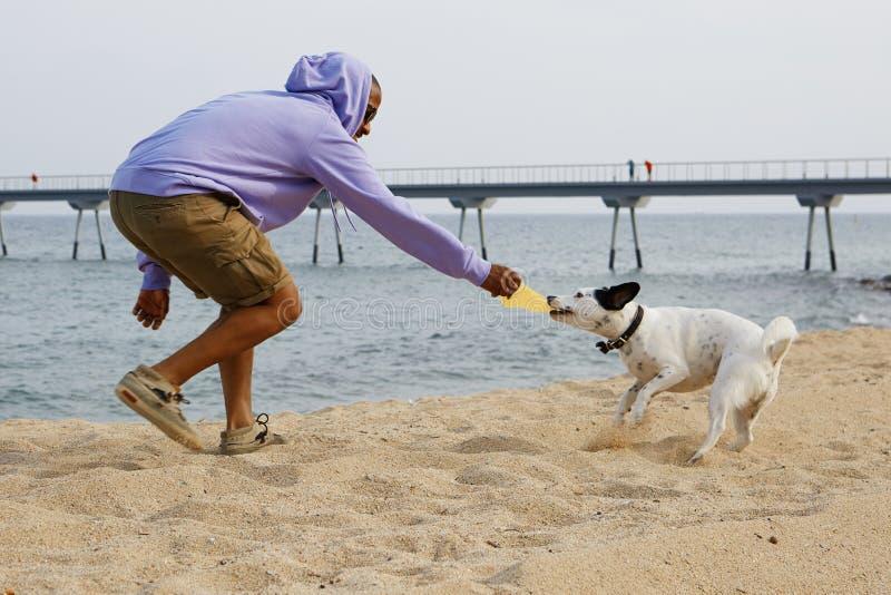体育hoody使用的活跃年轻非裔美国人的人行家与他的在海滩的狗晴天 库存图片