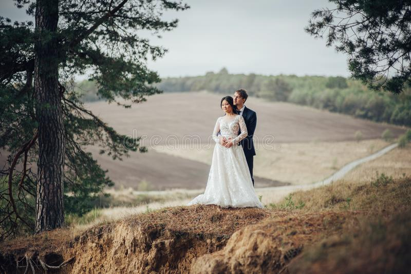 体贴亲吻在云杉的树之间的最近被婚姻的夫妇 库存图片