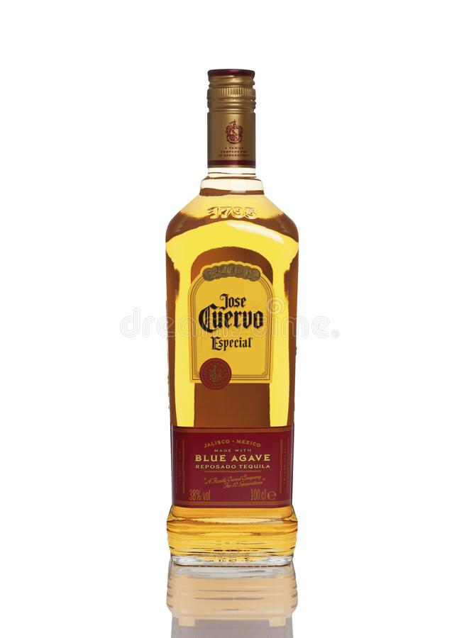 何塞特别的奎尔沃,蓝色龙舌兰龙舌兰酒金子 库存图片