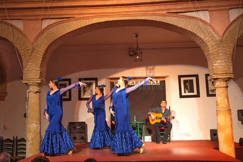 佛拉明柯舞曲舞蹈家和歌手表现 免版税库存图片