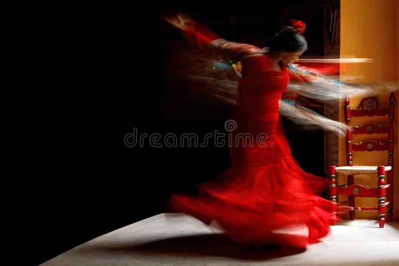 佛拉明柯舞曲舞蹈家的训练 免版税库存图片