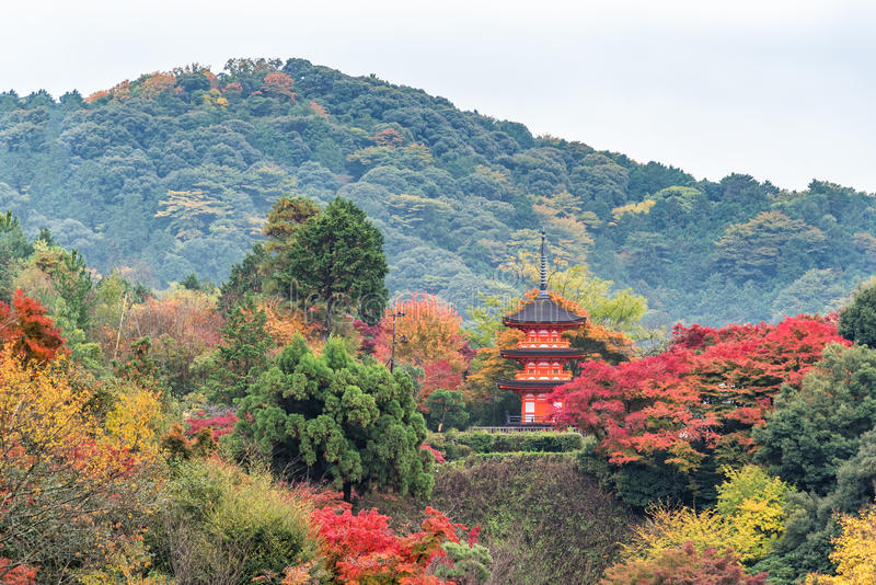 佛教寺庙的塔有五颜六色的秋天森林的在京都,日本 免版税库存图片