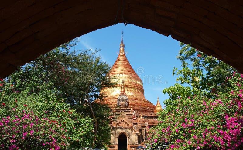 佛教寺庙, Dhammayazika塔, Bagan,缅甸(缅甸)。 库存图片