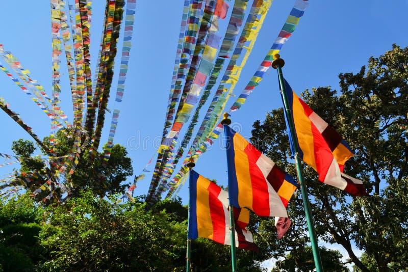 佛教徒标记祷告西藏人 库存照片